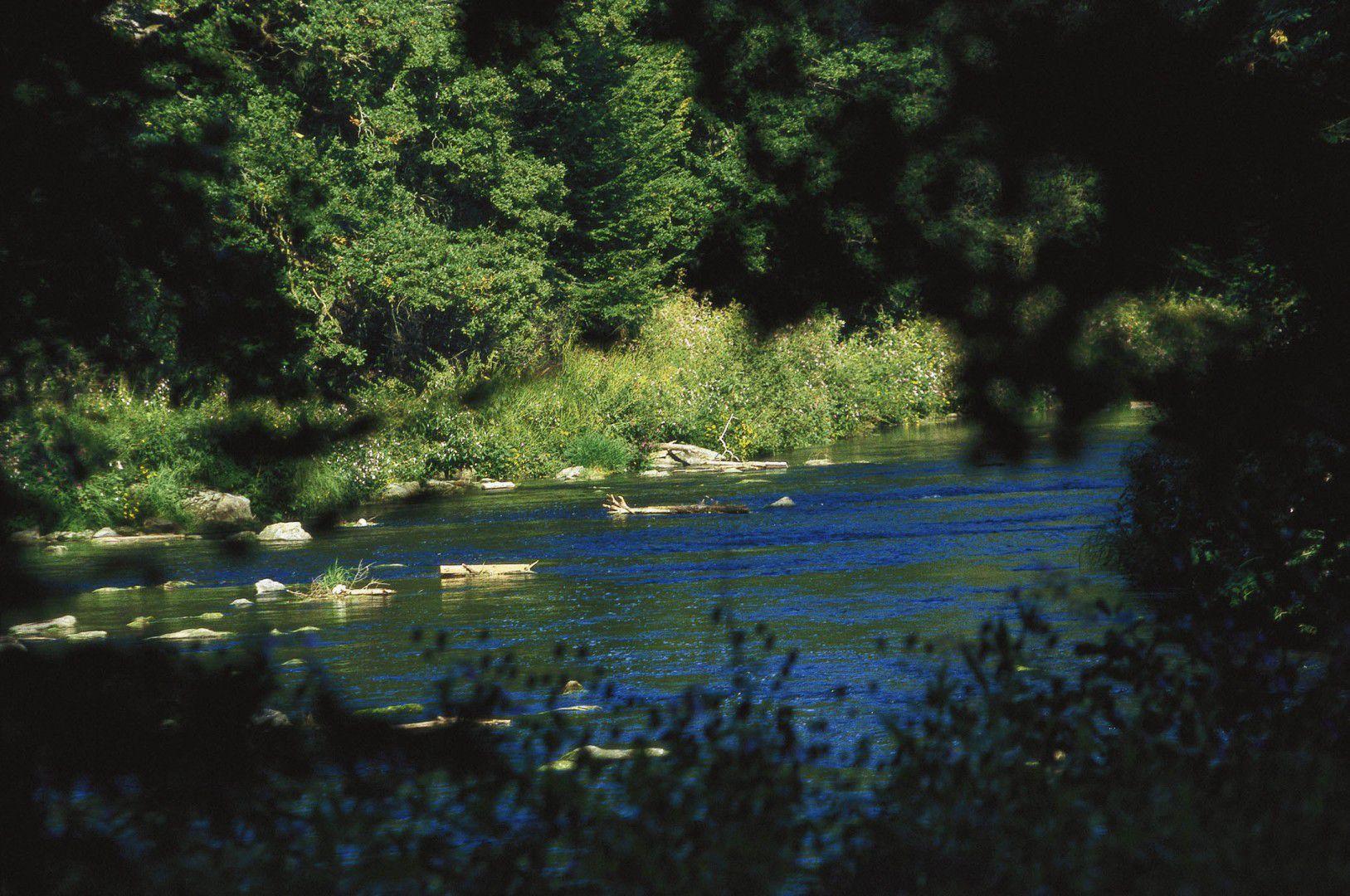 Gewässer in Bad Griesbach