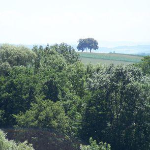 Landschaft um Bad Griesbach